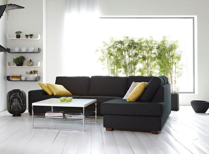 Декоративные растения в интерьере квартиры и дома Размещение комнатных растений вблизи окна