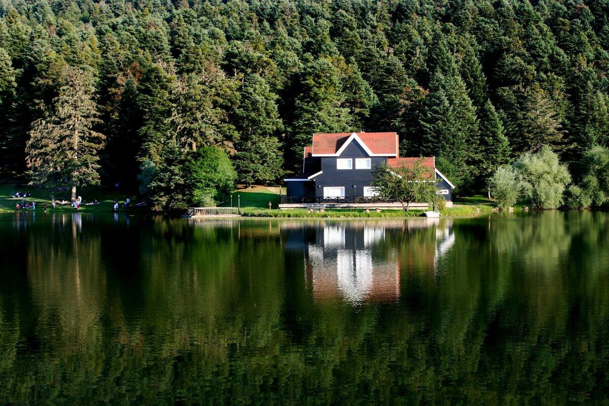 дом на берегу озера картинка