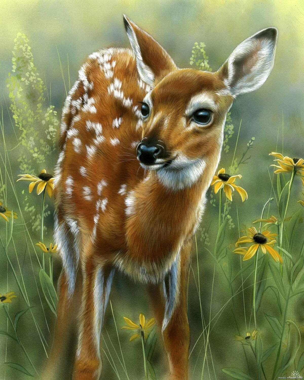 Днем рождения, открытки с животными в лесу