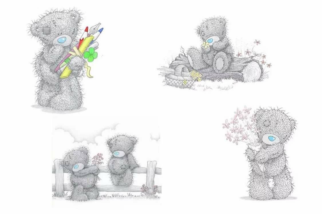 применение цветные картинки мишек тедди дрозофила частый гость