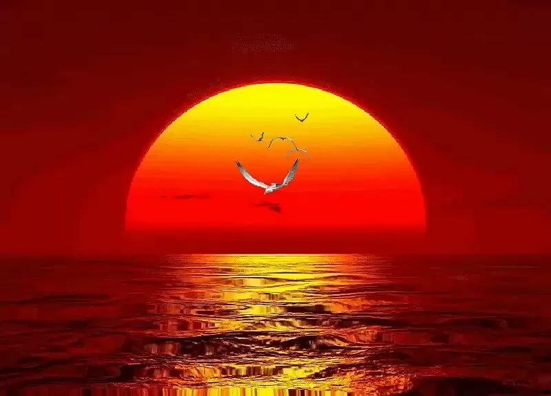 Гифки с солнцем природой, открыток