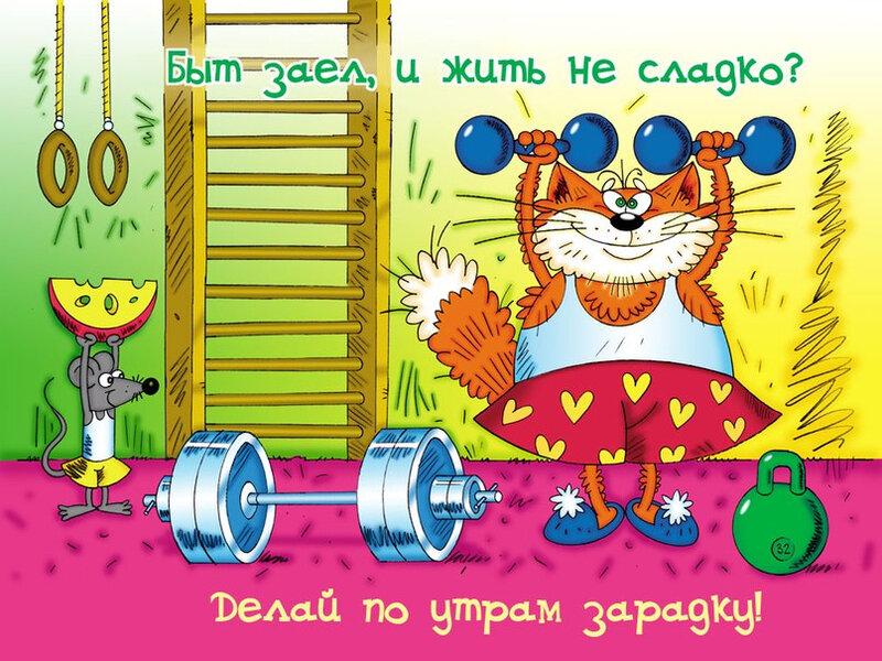 Картинки с днем физкультурника прикольные с животными, марта своими