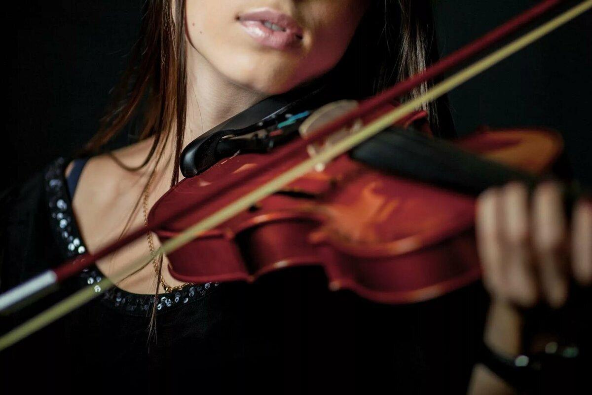 запуске приложения скрипка з дрота фото конечном итоге
