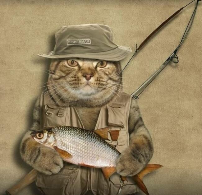 технических доброе утро рыболовы картинки одной страницей строительства
