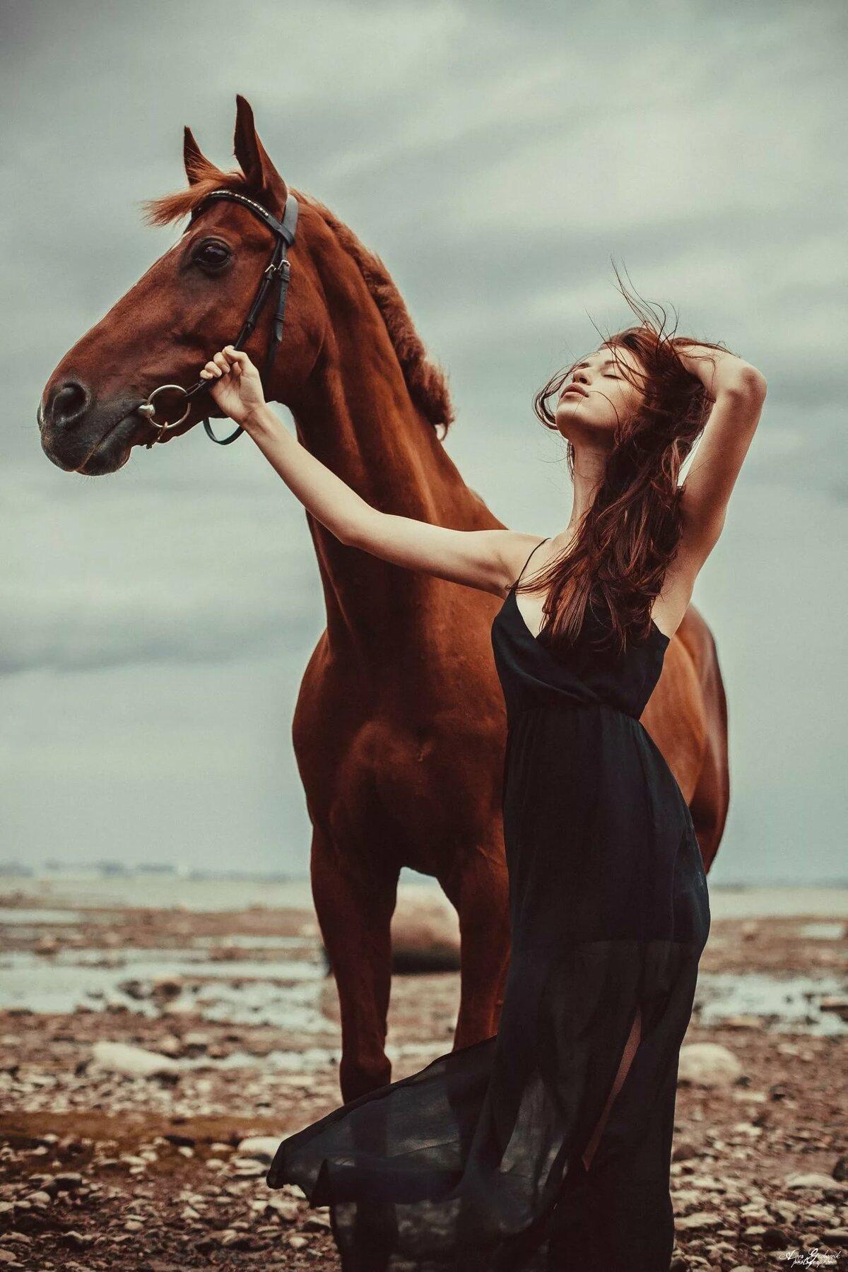 создать картинки с лошадьми образ становится трогательно