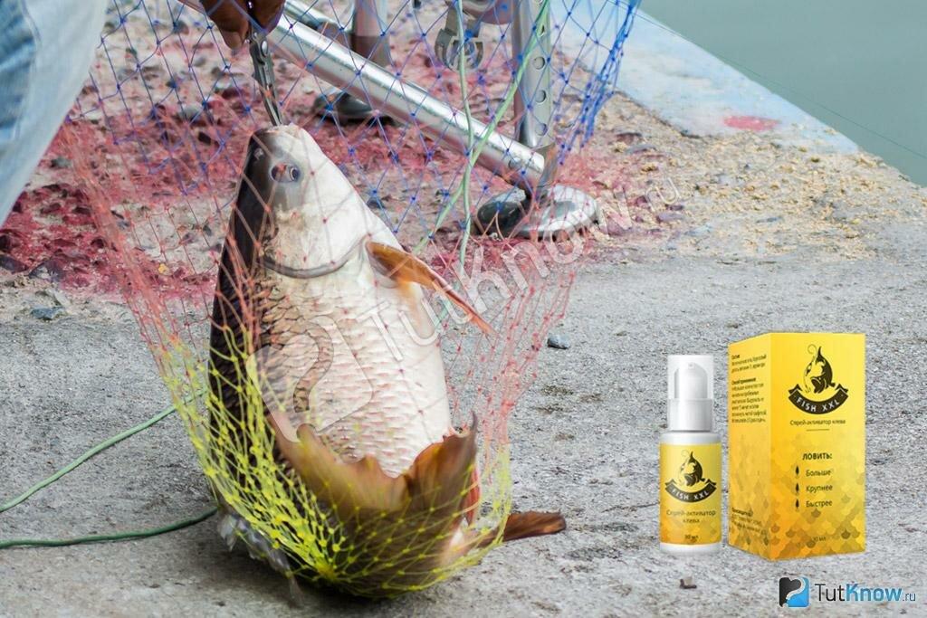 Fish XXL - активатор клева в Салавате