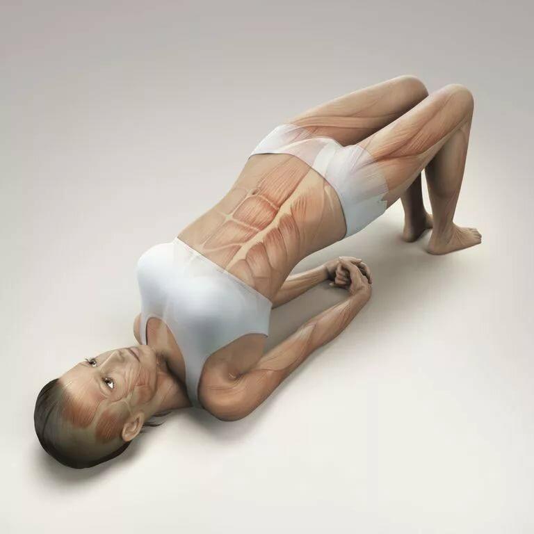 Гимнастика для суставов картинки