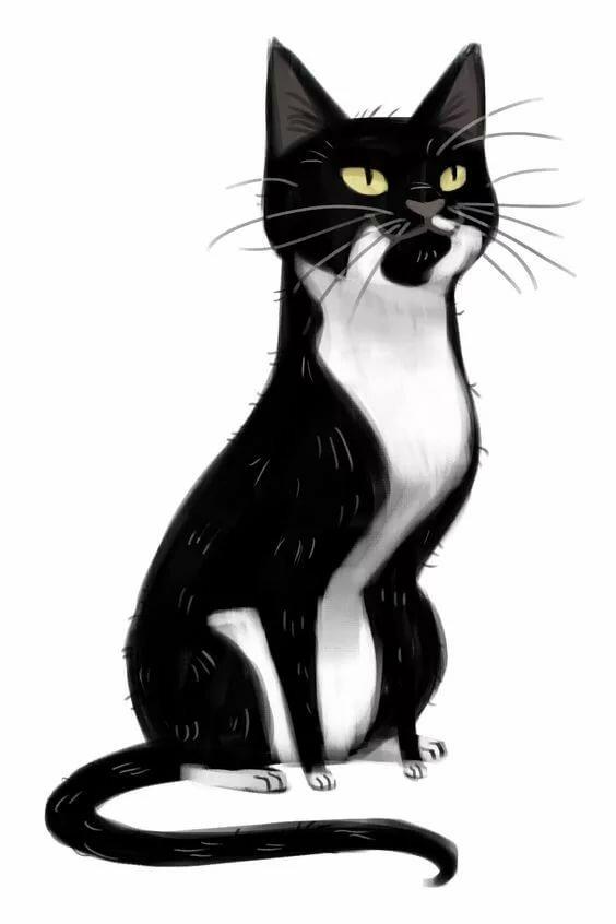 Нарисованные черно белые коты