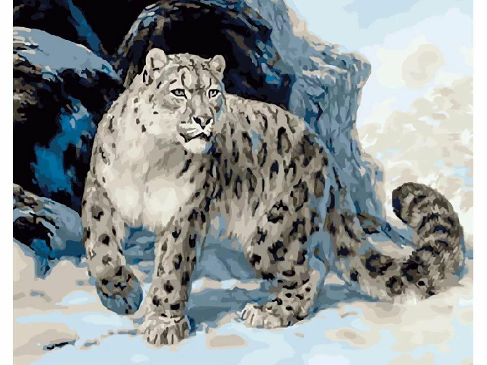 Снежный барс картинки, открытка казанской