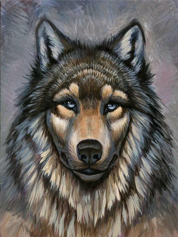 сыр порежьте волки фото картинки рисунки семья