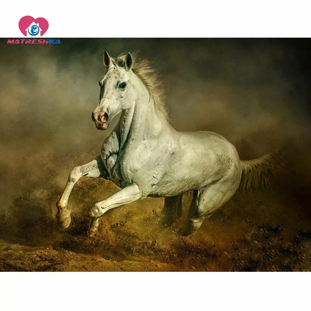 сожалению, картинки убегаю от коня фотомоделей актрис