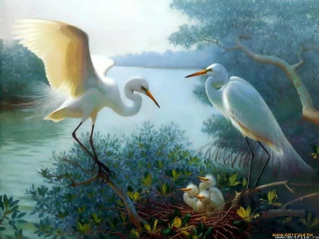 картинки с образом птиц тут