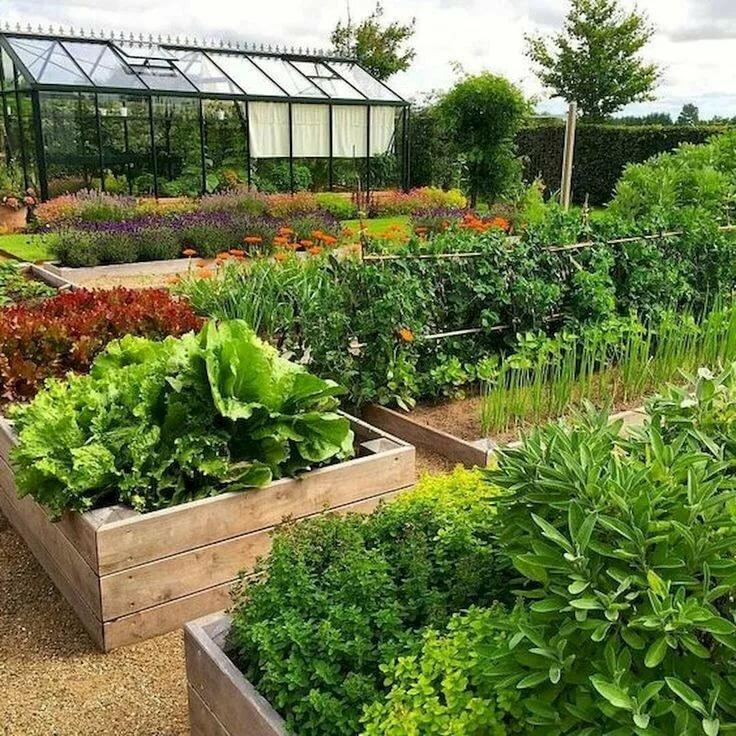 часть картинки оформить огород сад более