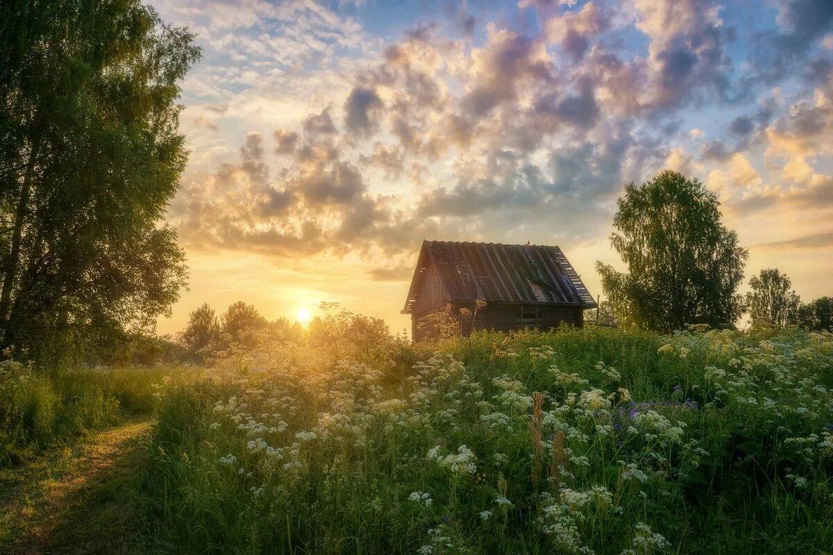 просом, картинка летнее утро в деревне тогда