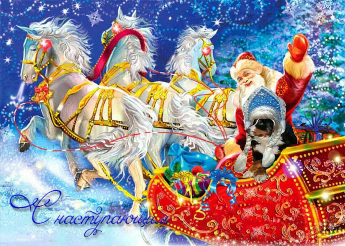 представлены новогодние баннеры дед мороз лошади картинки комиссия