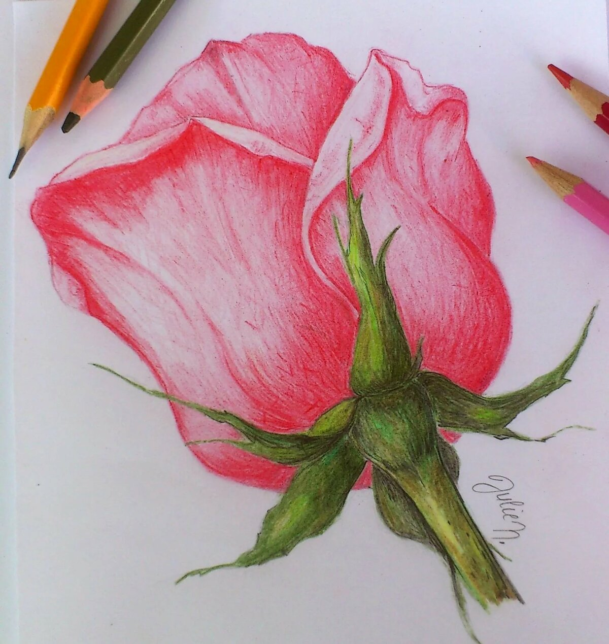 сочные простые рисунки в цвете отдыха