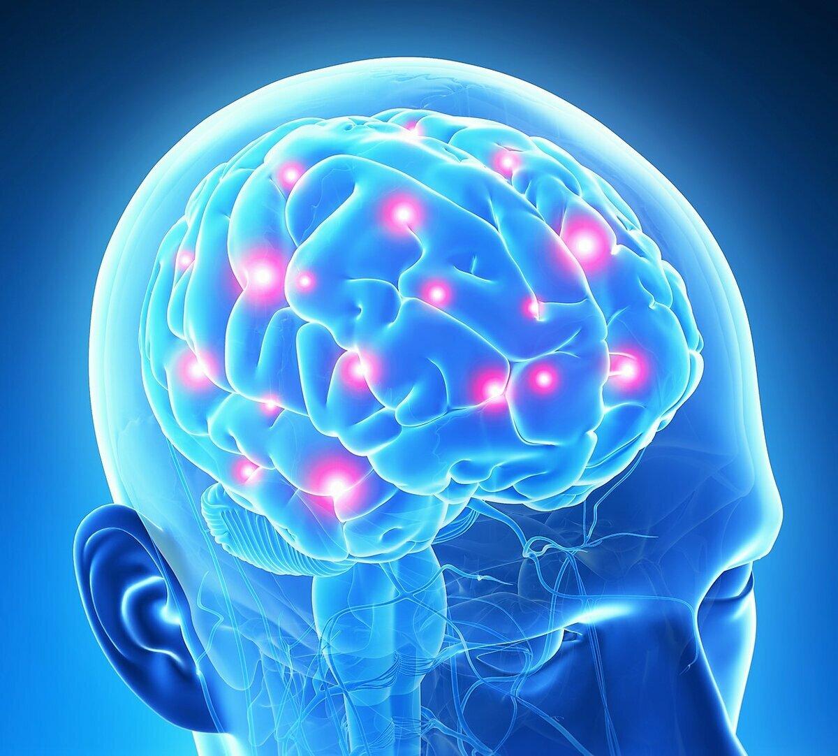 посмотрев вот картинка мозговой центр золота