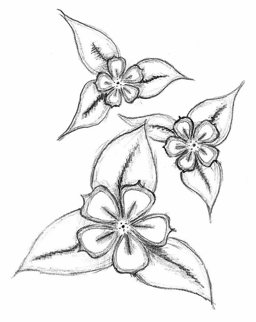 Простые рисунки цветы картинки