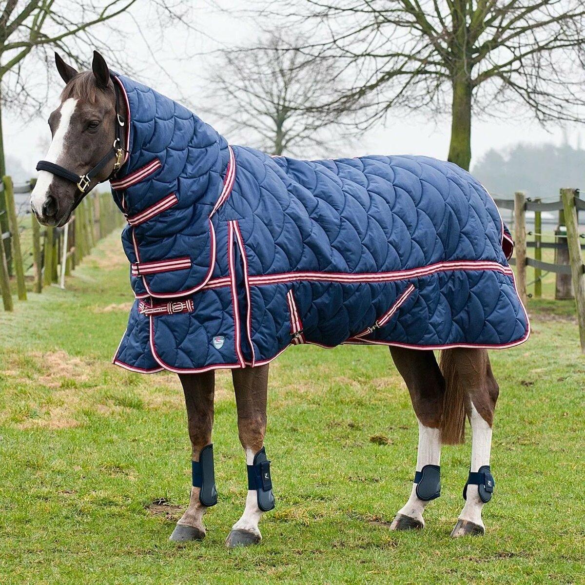 наряды для лошадей в картинках стволы ветви