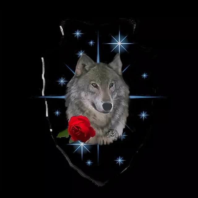Гифка с днем рождения для мужчины с волками, красивый шрифт надписью