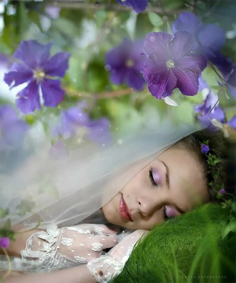 видеть во сне открытки с цветами пригласить меня свадьбу