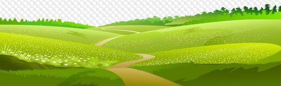 векторная картинка поляна