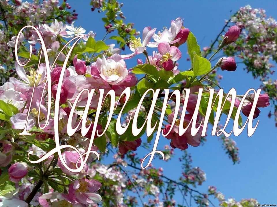 Открытки с именем маргарита