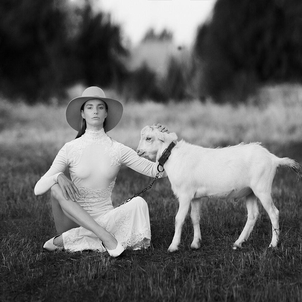 классических маффинов коллекция черно белых фотографий быстро вкусно приготовить