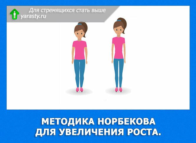 Норбеков методика похудения