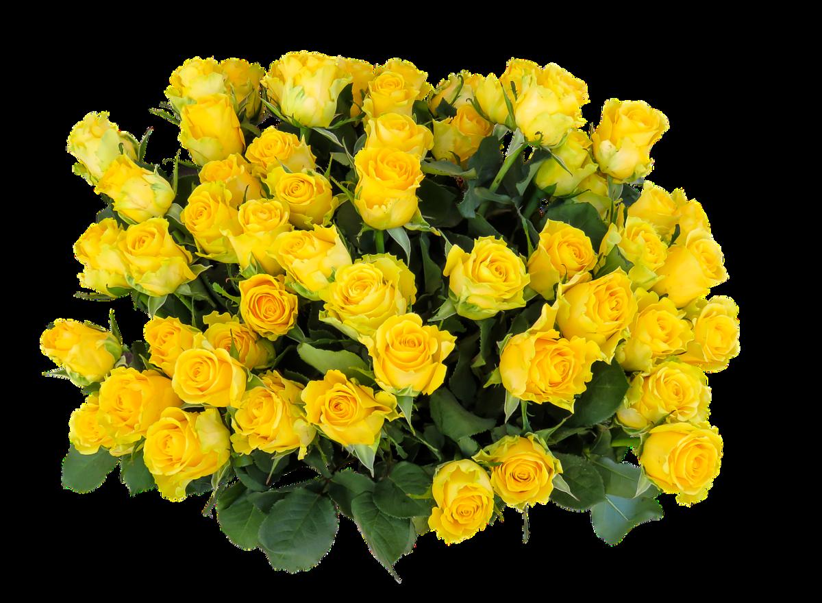 Открытки с желтыми розами к дню рождения