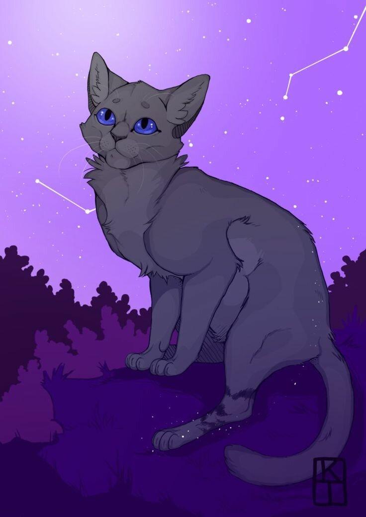 Картинки пепелицы коты воители