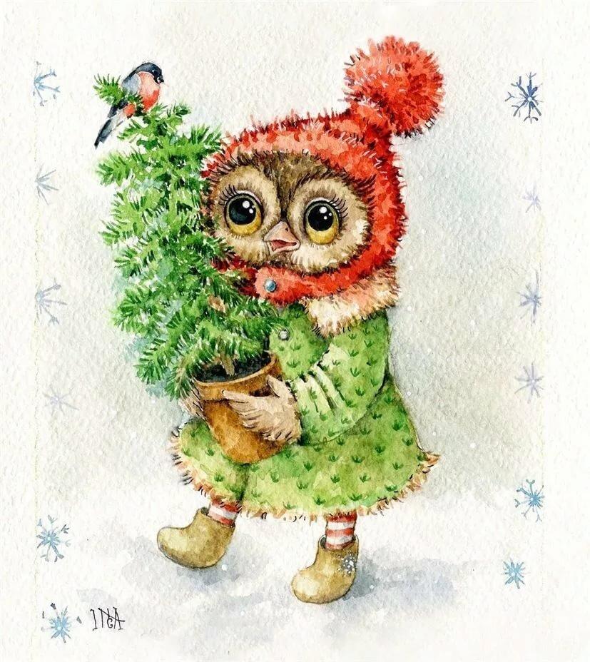 Поздравление днем, зимние новогодние картинки с совами