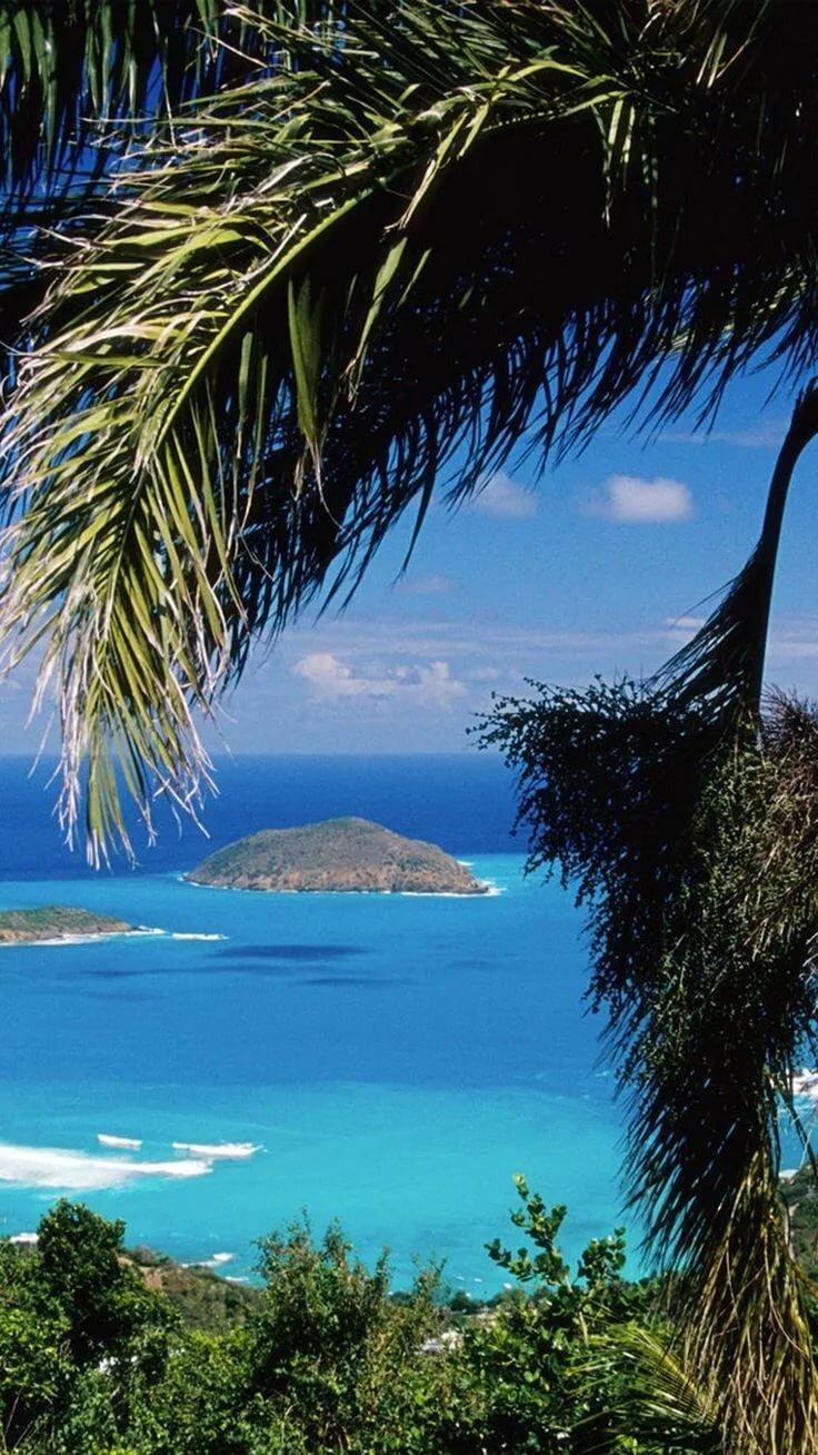 море красивые картинки на рабочий стол вертикальные лосиный остров ограничен