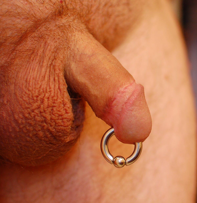 Free penis piercing