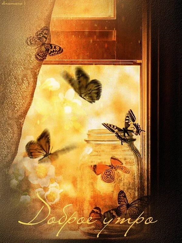 Картинки, картинки красивые бабочки с добрым утром