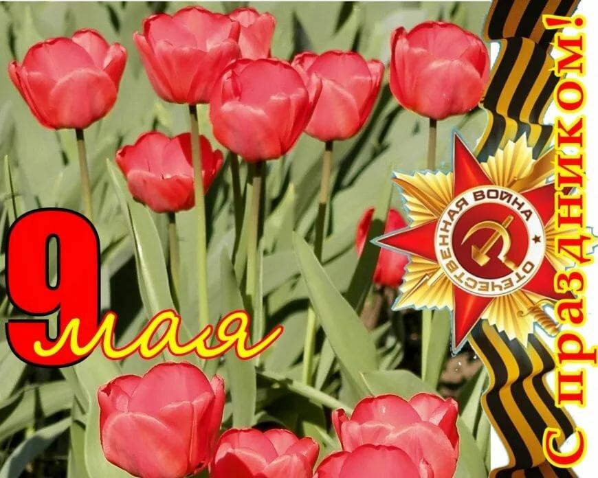 несколько марок тюльпаны на день победы открытки фото красивые таблички краткой