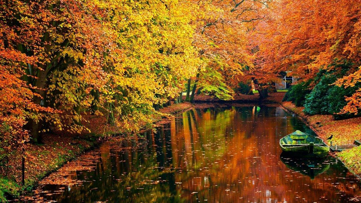 Картинки изображения осень