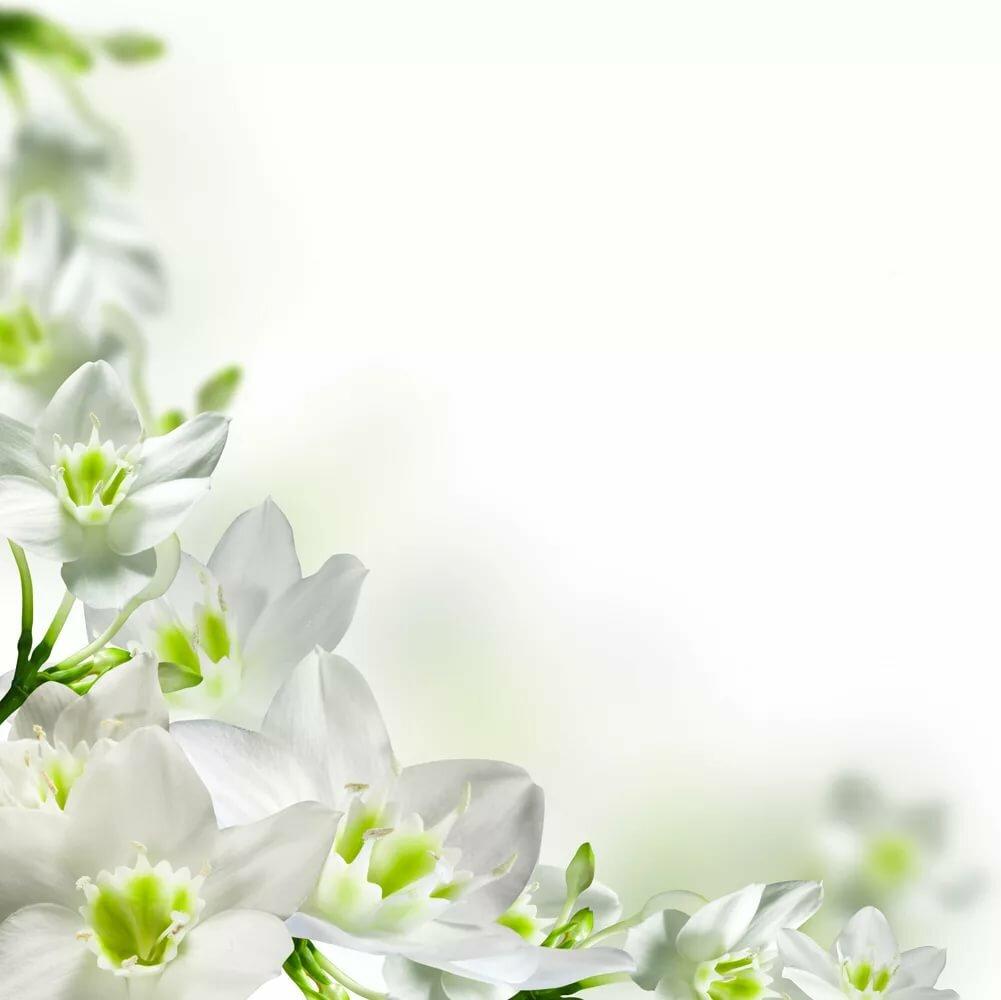 Поздравления пасха, открытки рамки весна
