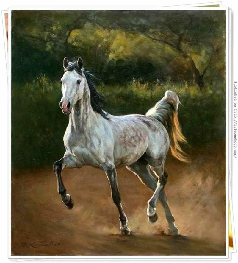 Лошади картинки художник