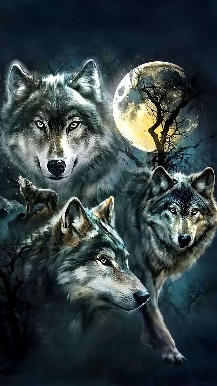 Красивее картинки волков