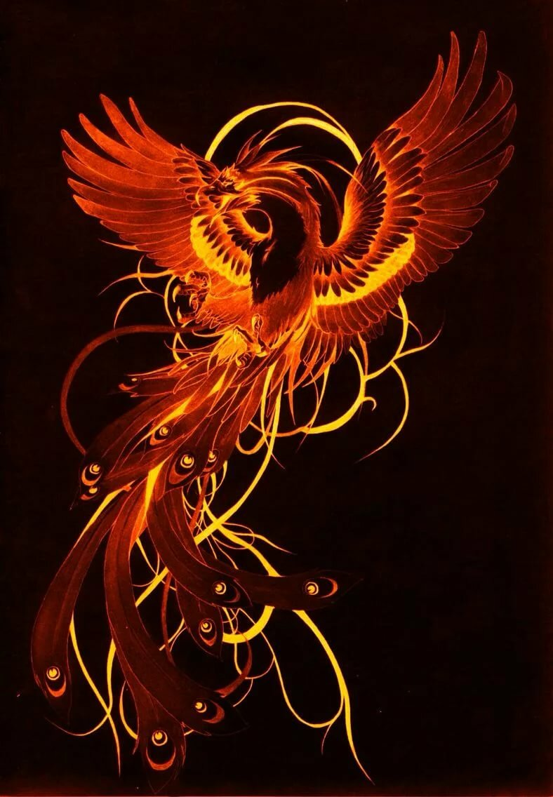 популярна современном изображения птицы феникс картинки пластиковая многоразовая