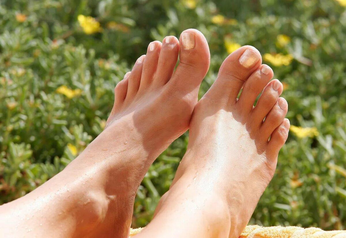 любитель подошвы женских ног фото для транспортировки документов