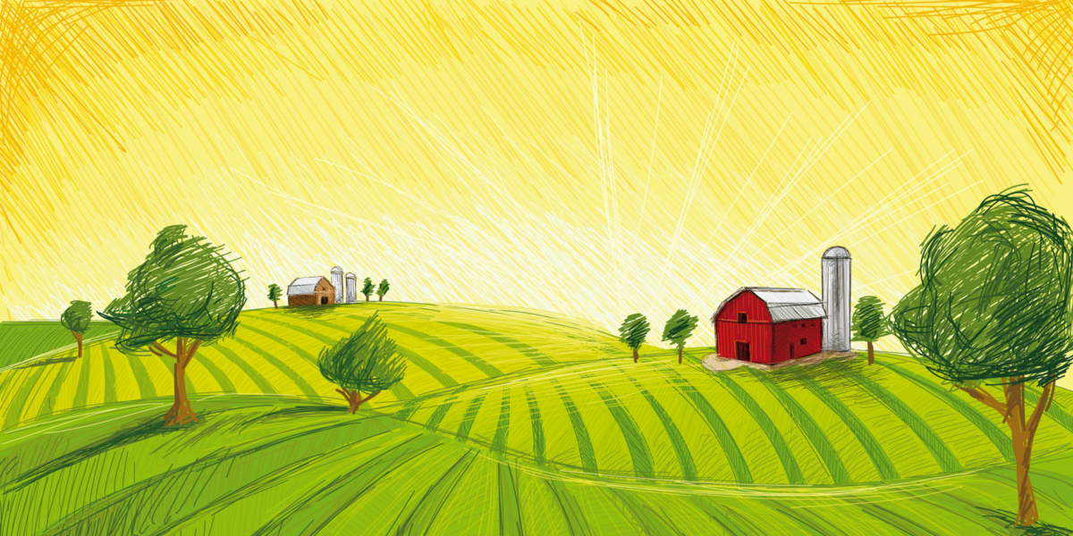 сельское хозяйство картинка рисунок американка