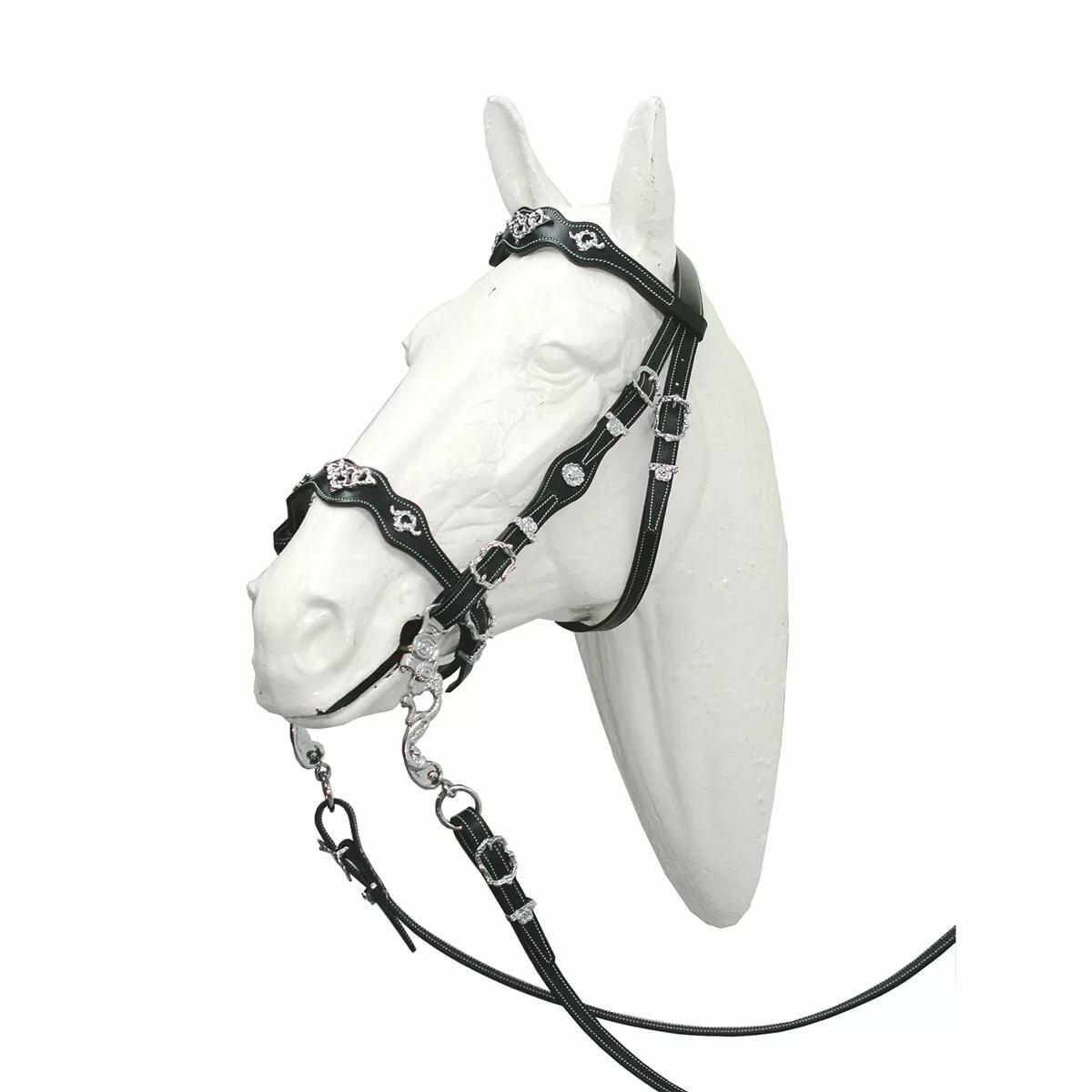 только уздечек для лошадей картинки стоянке