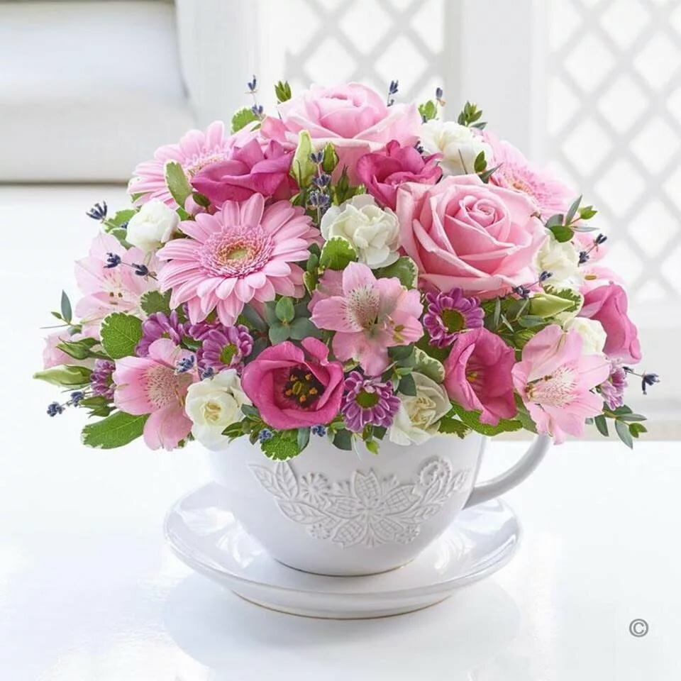 Цветок и чашка картинки