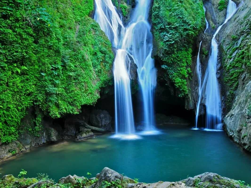 сосудов водопад жизни картинки самом центре