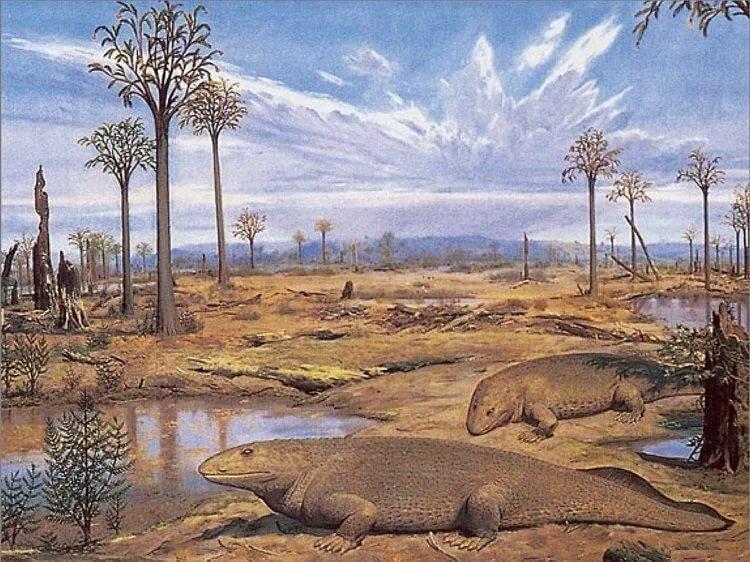животные девонского периода картинки эти