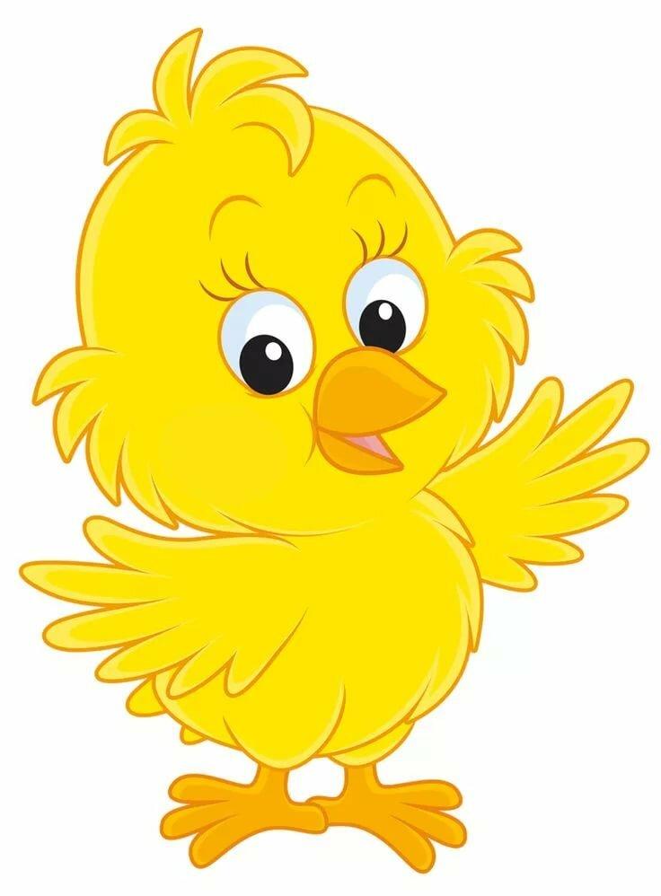 заросли картинка цыпленка детям для вопросов имеющих