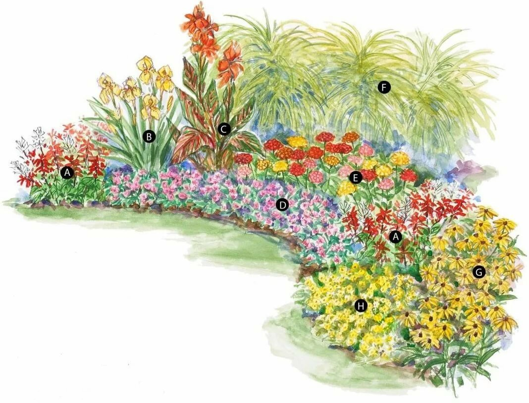картинки схем цветников важности элемент
