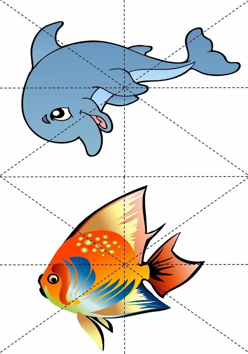 челкой дидактические картинки морские обитатели приурочен дню знаний